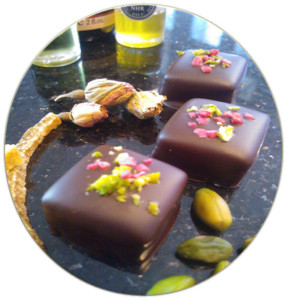 The Chocolate Froglet, Tenby